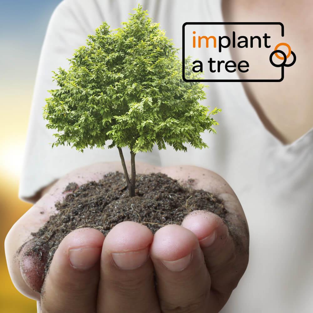 Hand mit selbst gepflanzten Bäumen unserer Initiative implant a tree